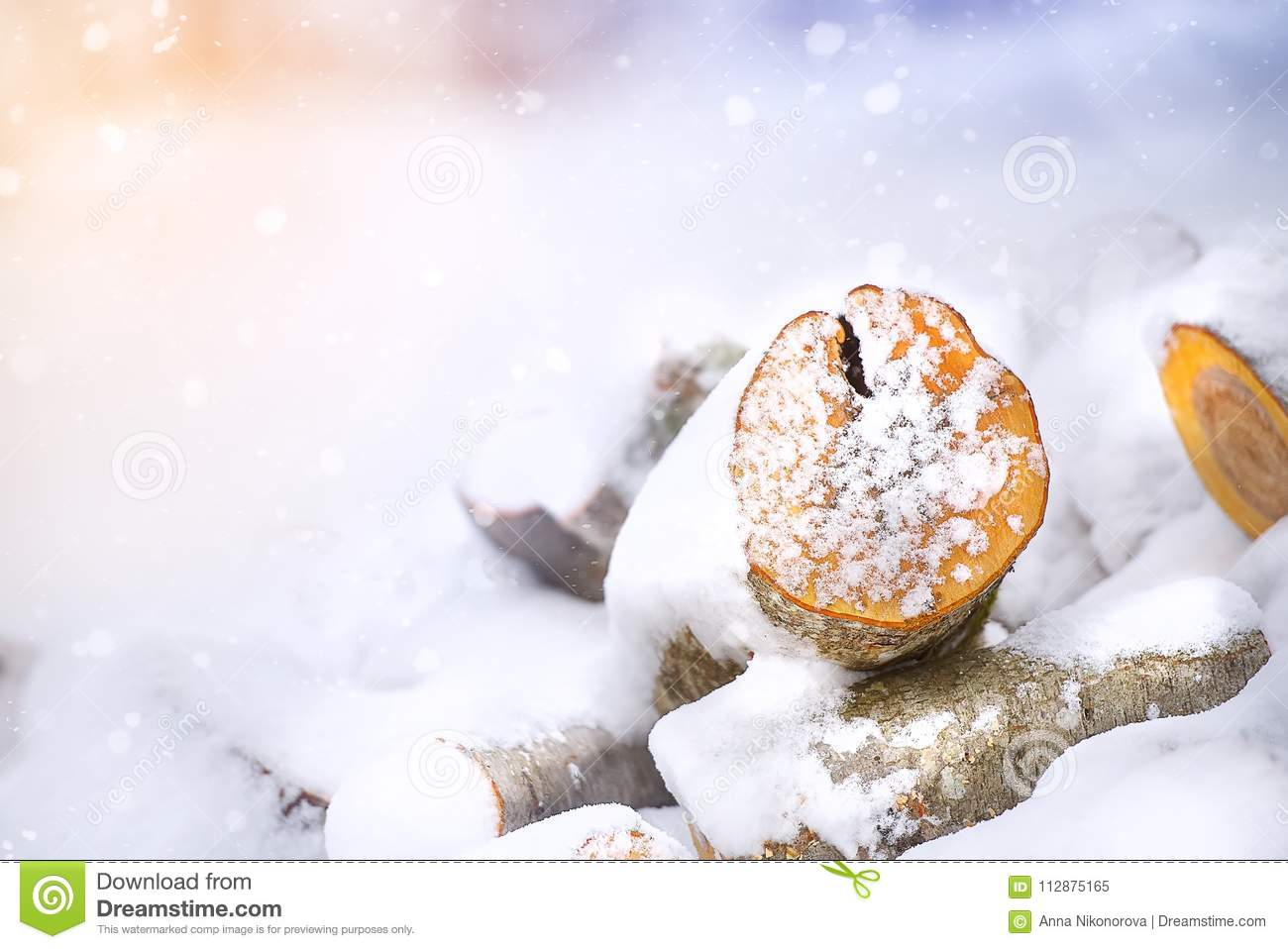 Wooden logs in winter snow