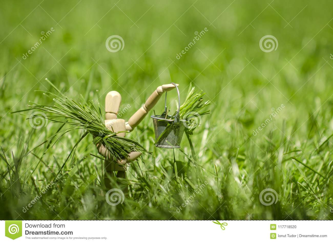 Wooden mannequin with bucket in hand, filled with green grass