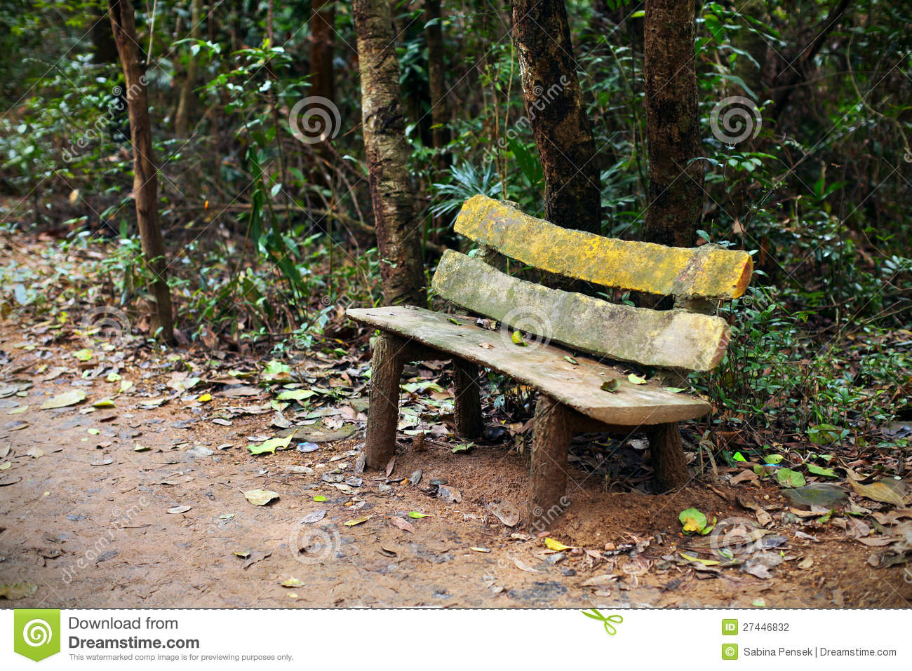 Wooden Park Bench Sitting Area In The Woods Stock graphy Image