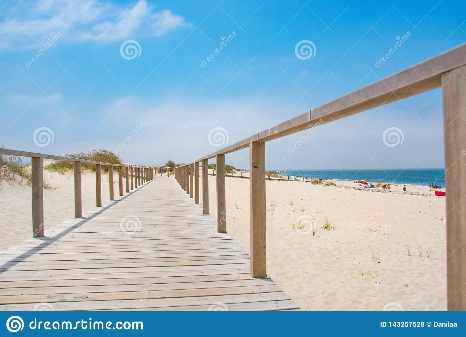 Wooden path with Atlantic Ocean view