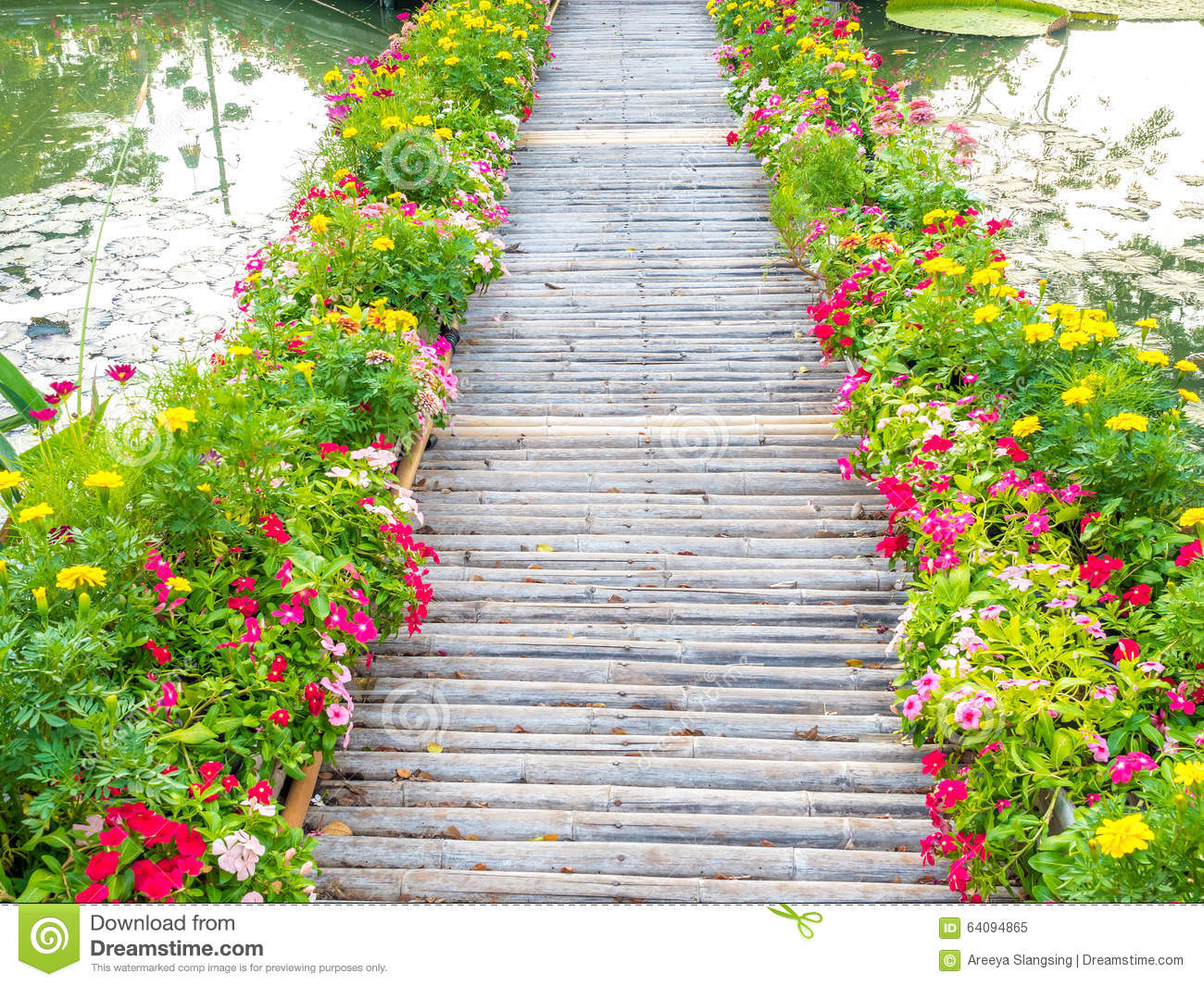 Wooden Path With Beautiful Flowers In Park Stock Image Image Of
