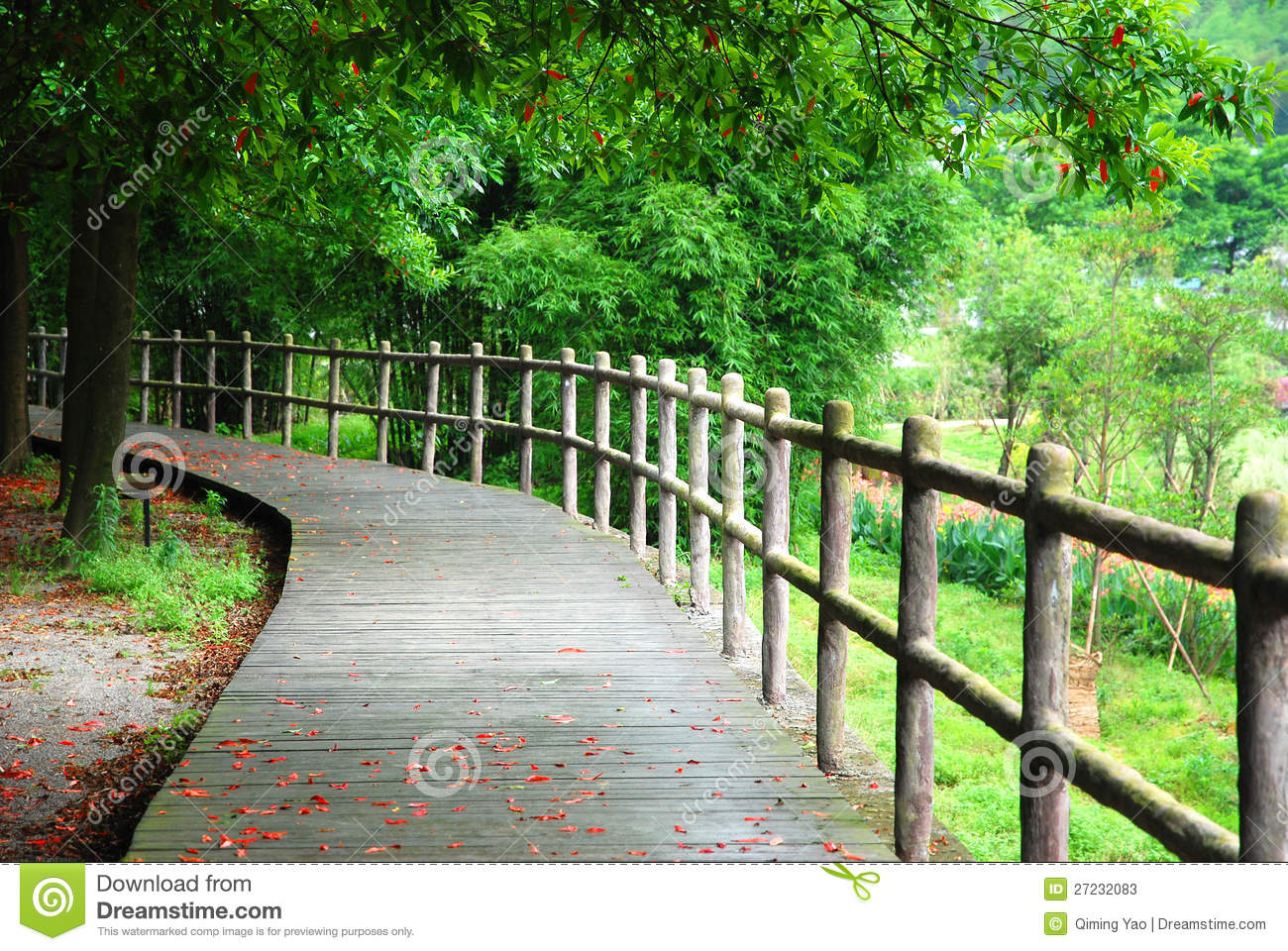 Wooden path and handrail