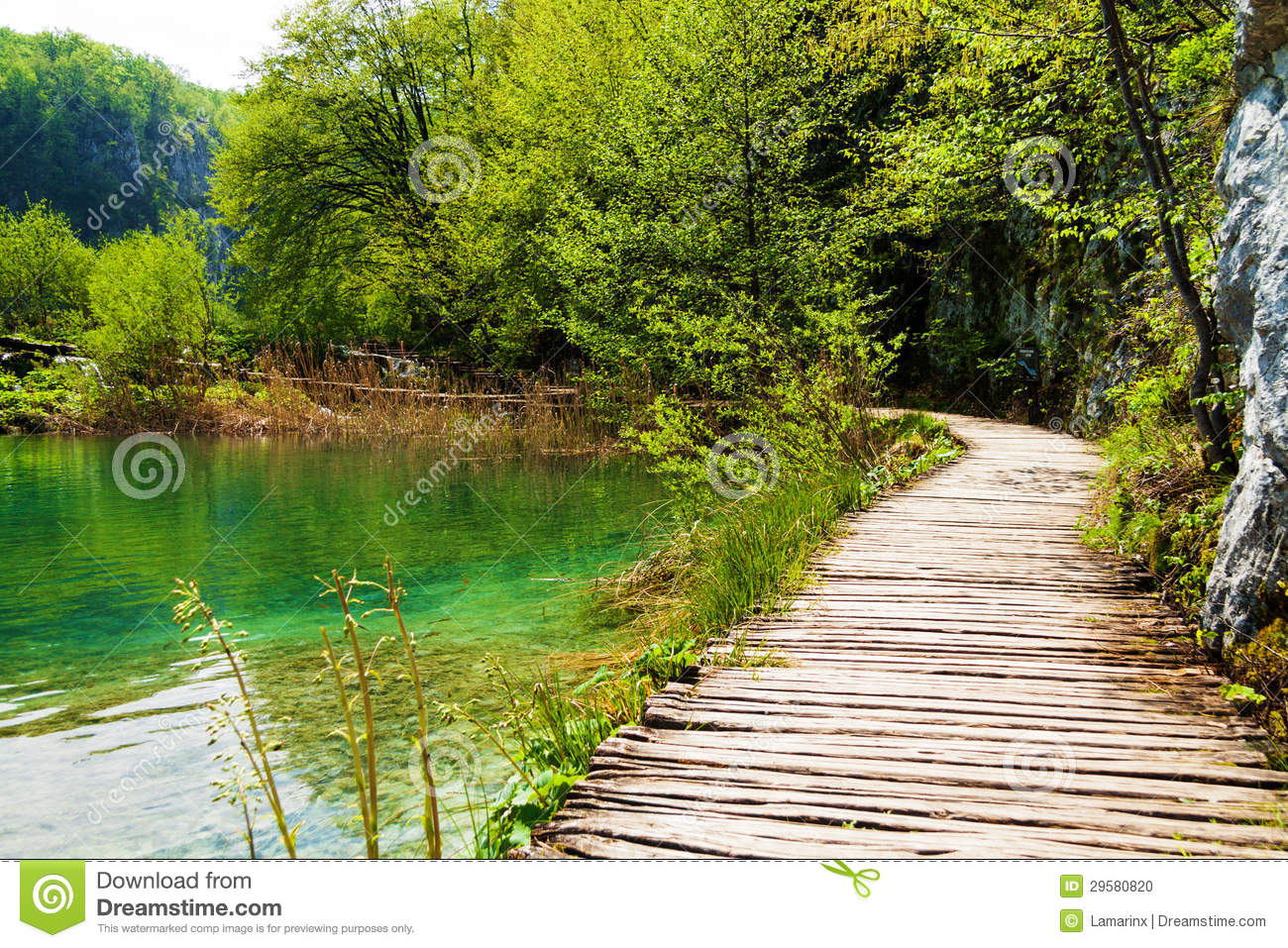 Wooden Path Near A Forest Lake In Plitvice Lakes National