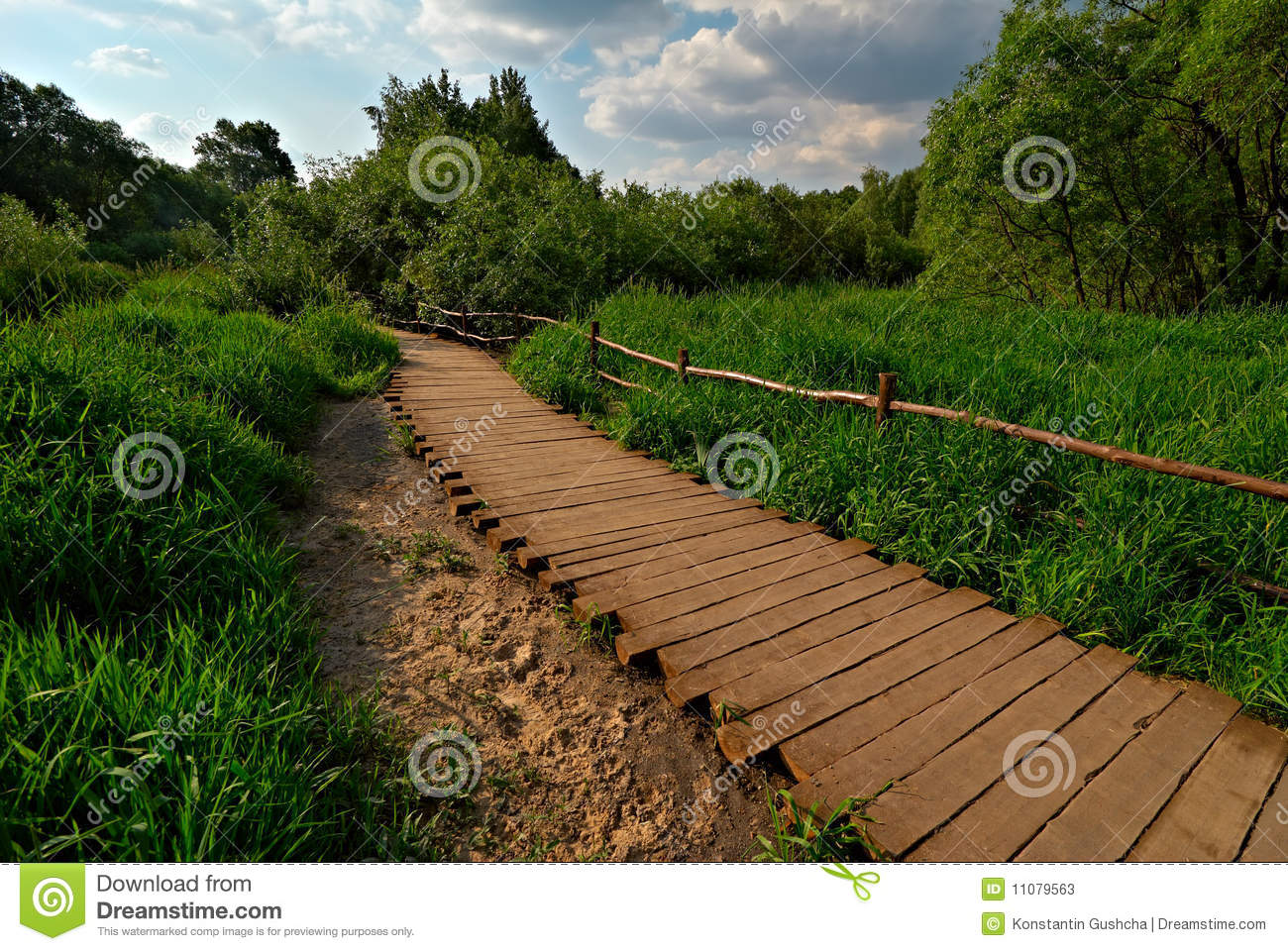 wooden pathway stock photos image 11079563