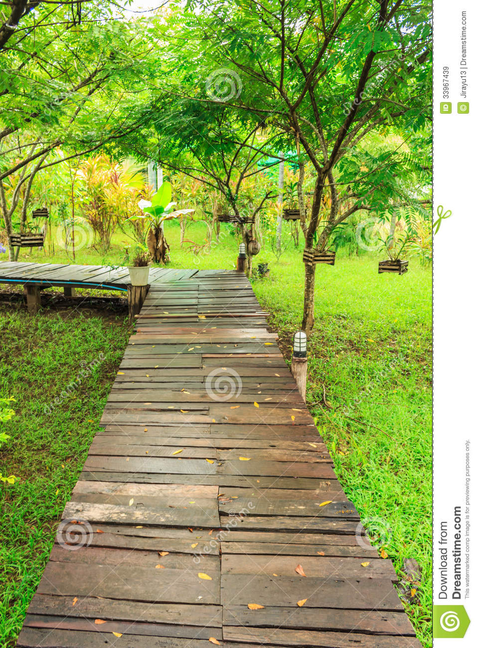 wooden pathway royalty free stock images image 33967439