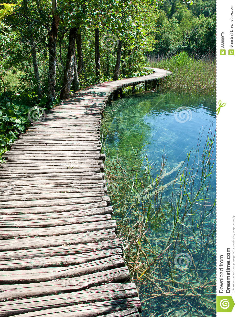 wooden pathway royalty free stock images image 33380979