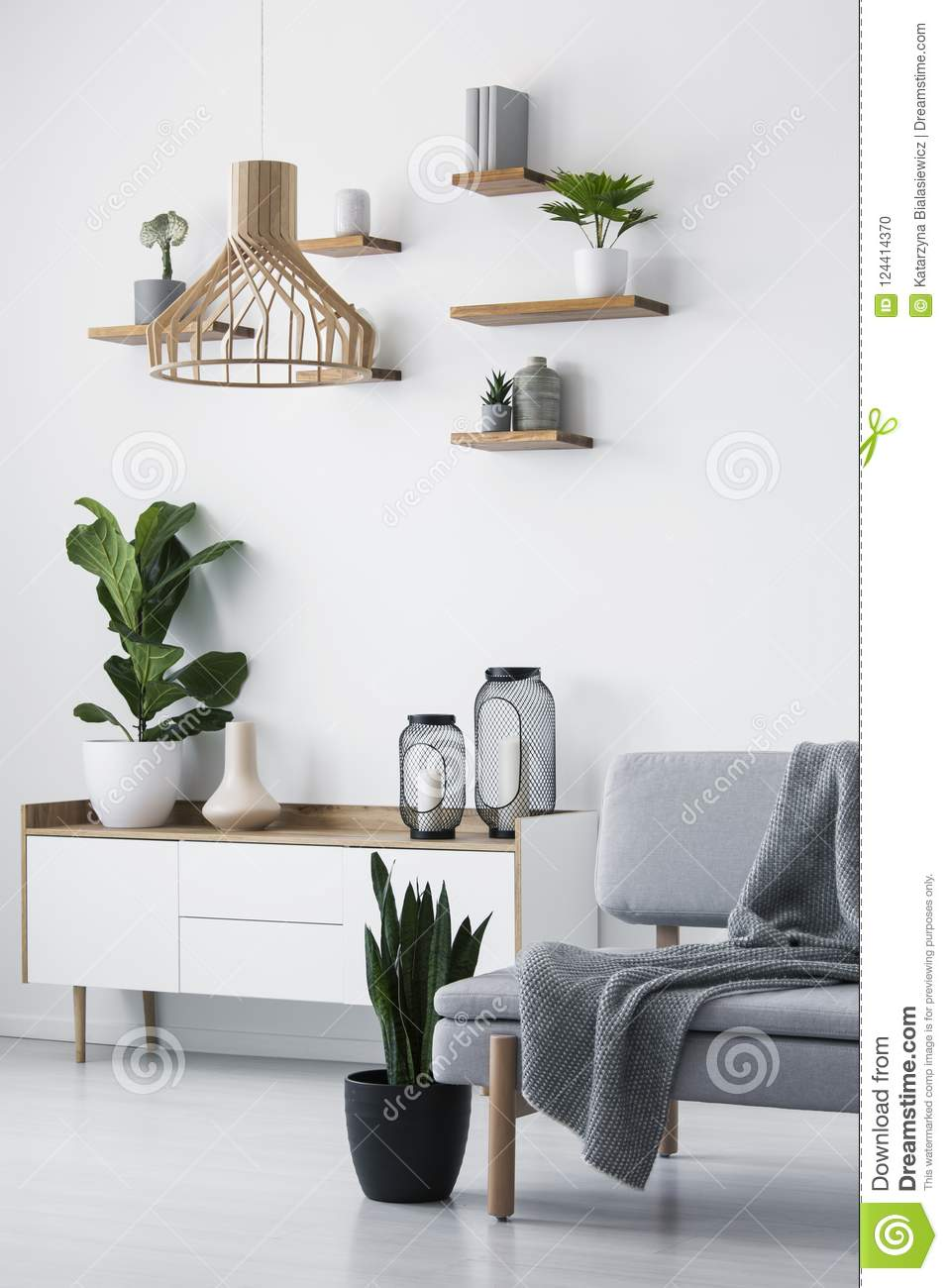 Wooden Pendant Light Simple Shelves On A White Wall And A Plant Stock Photo Image Of Monochromatic Plant 124414370