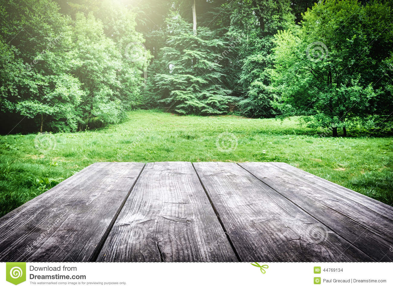 Wooden Picnic Table In Forest Stock Photo - Image: 44769134