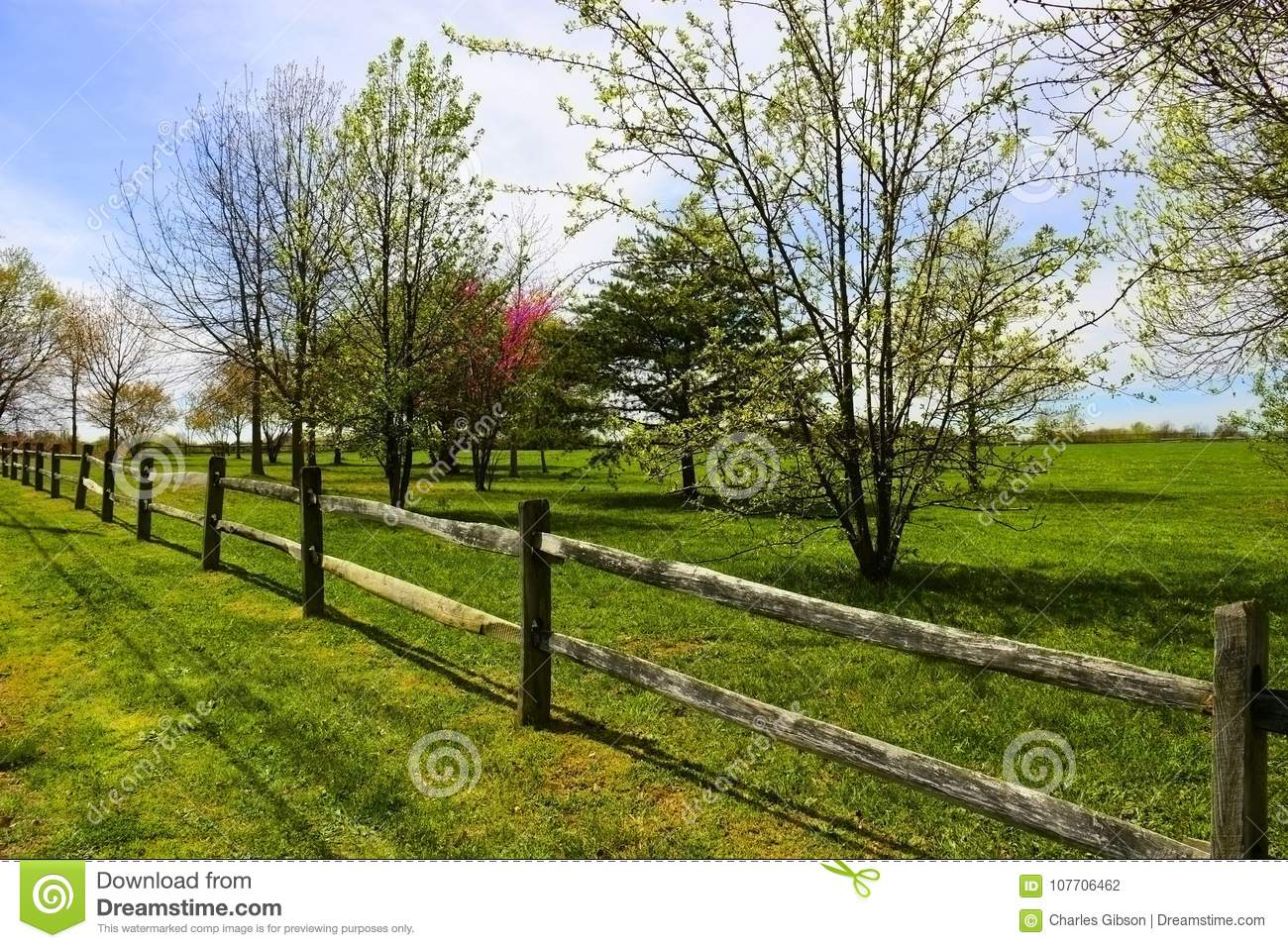 Wooden rail fence stock photo  Image of rails, borderline - 107706462