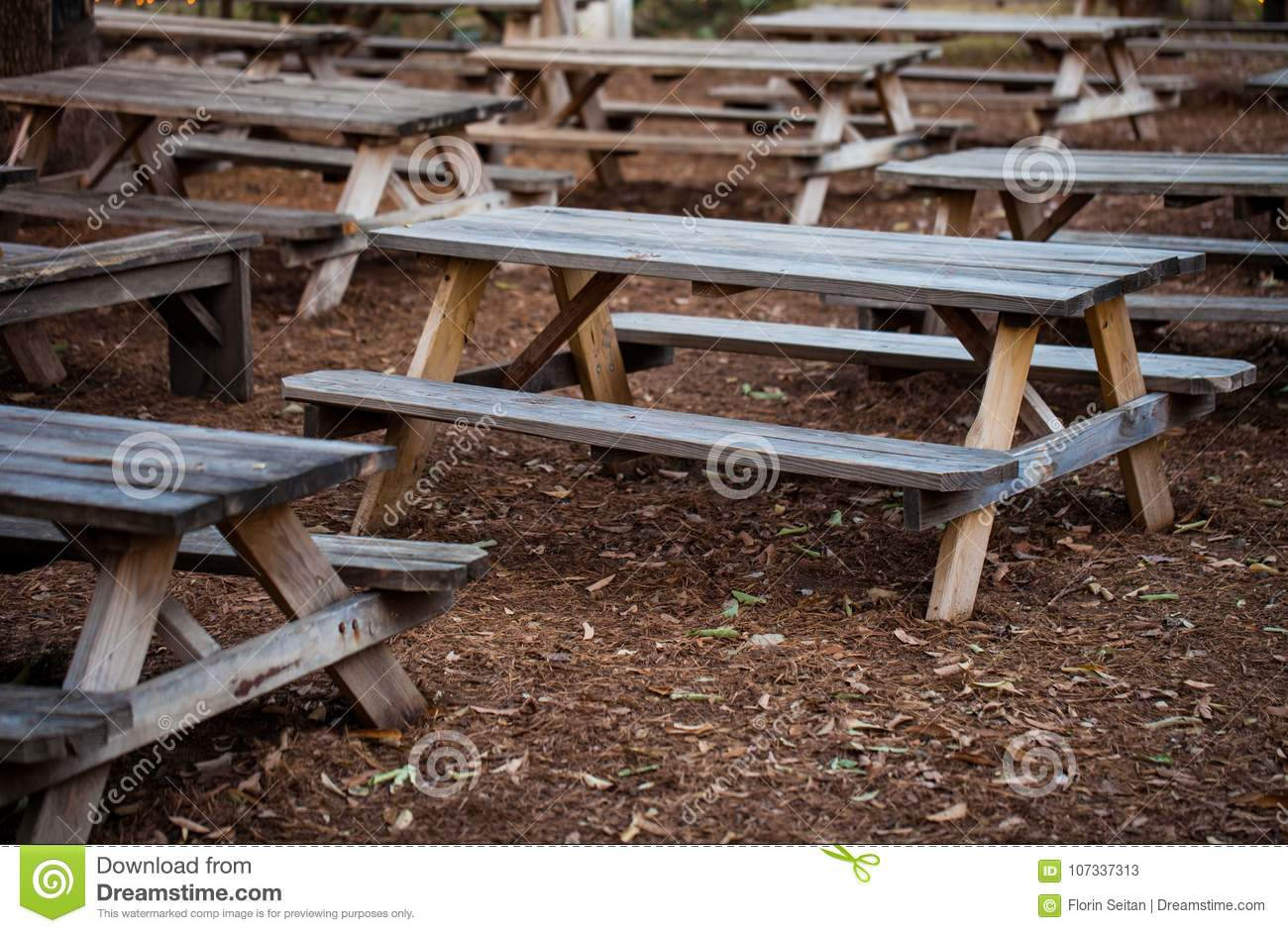 Wooden Rustic Benches Outdoor Restaurant Patio Stock Image Image