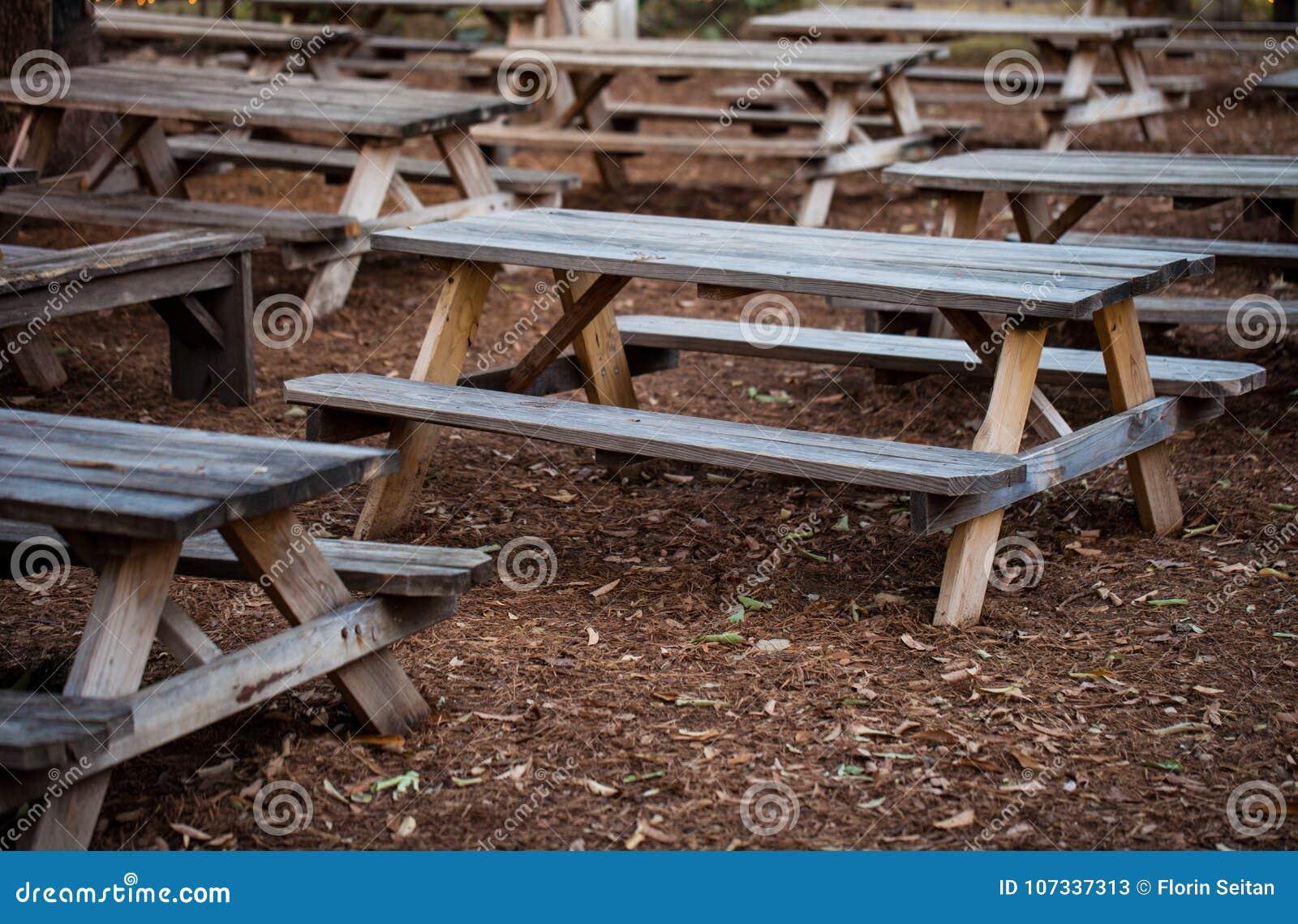 Wooden Rustic Benchesoutdoor Restaurant Patio Stock Image Image