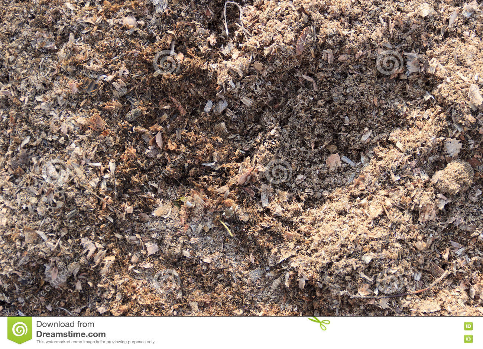 Wooden sawdust background stock photo image