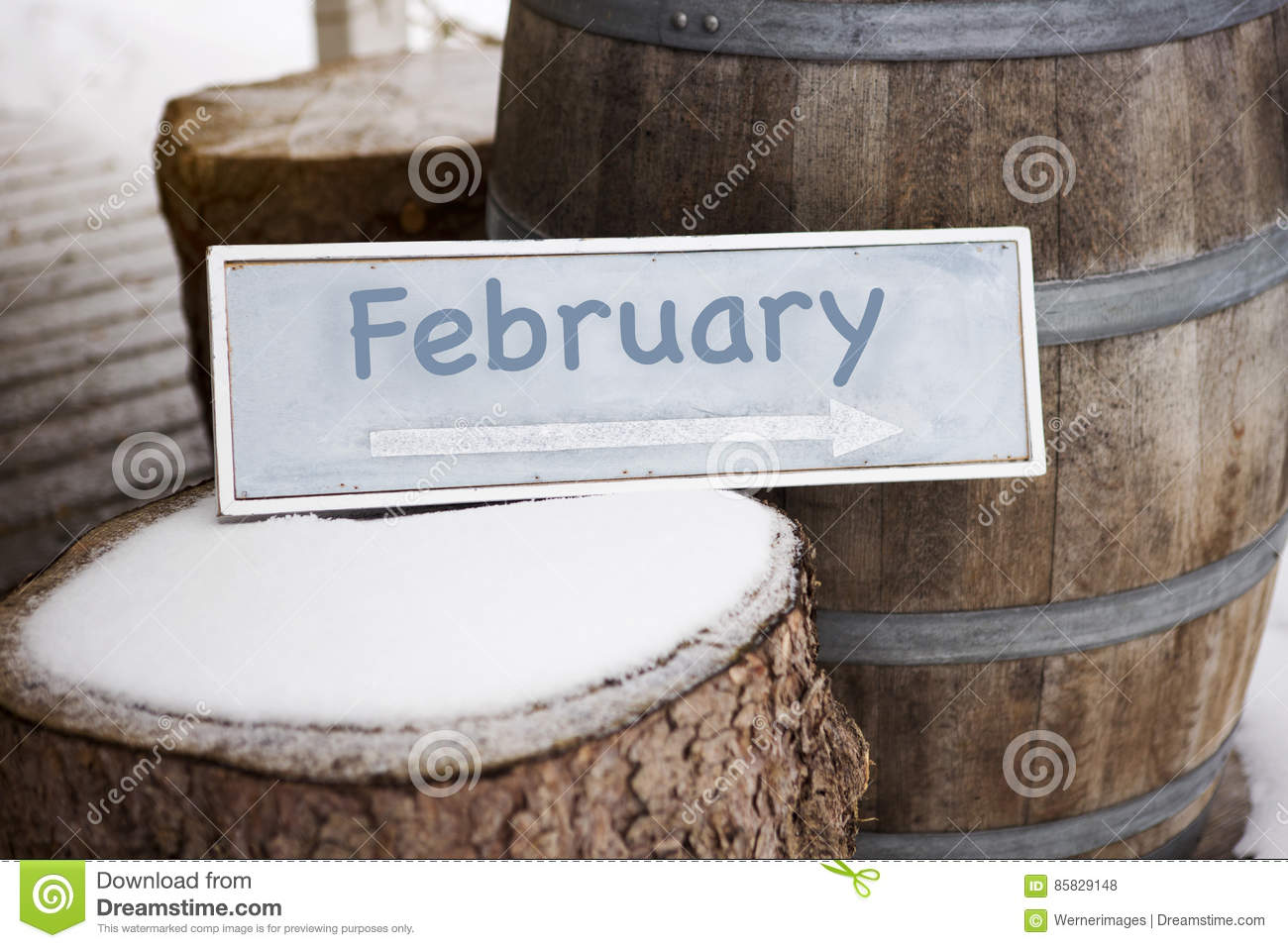 Wooden sign on tree stump with the word February