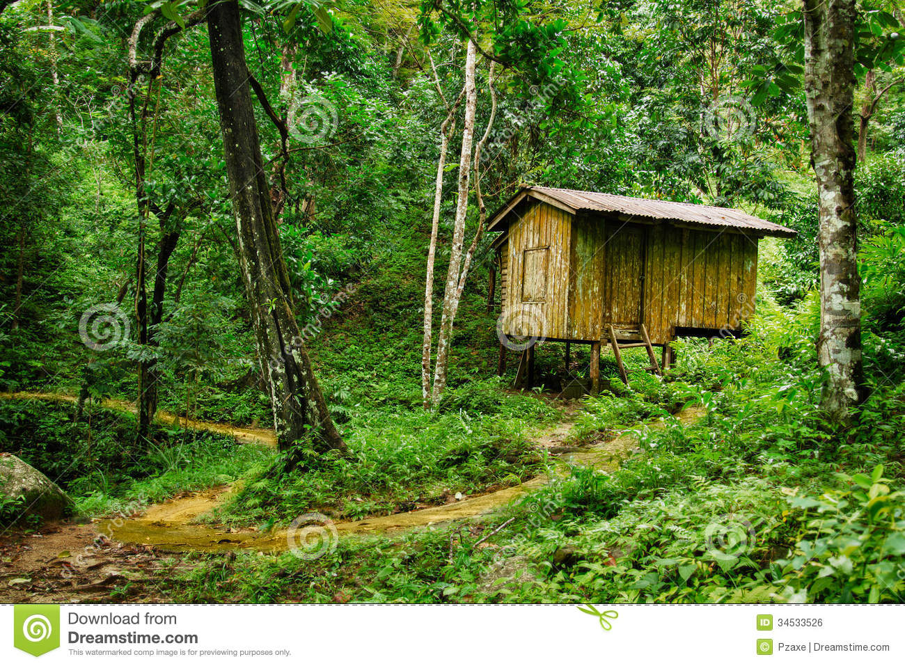 Small Country Cottage Plans Wooden Small House In A Tropical Forest Stock Photo