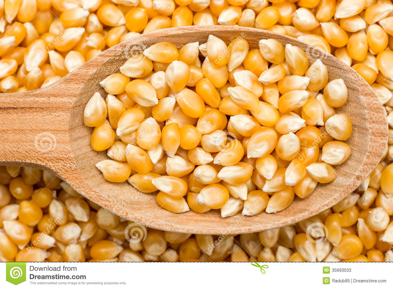 Wooden Spoon With Corn Seeds Stock Image Image 35693033