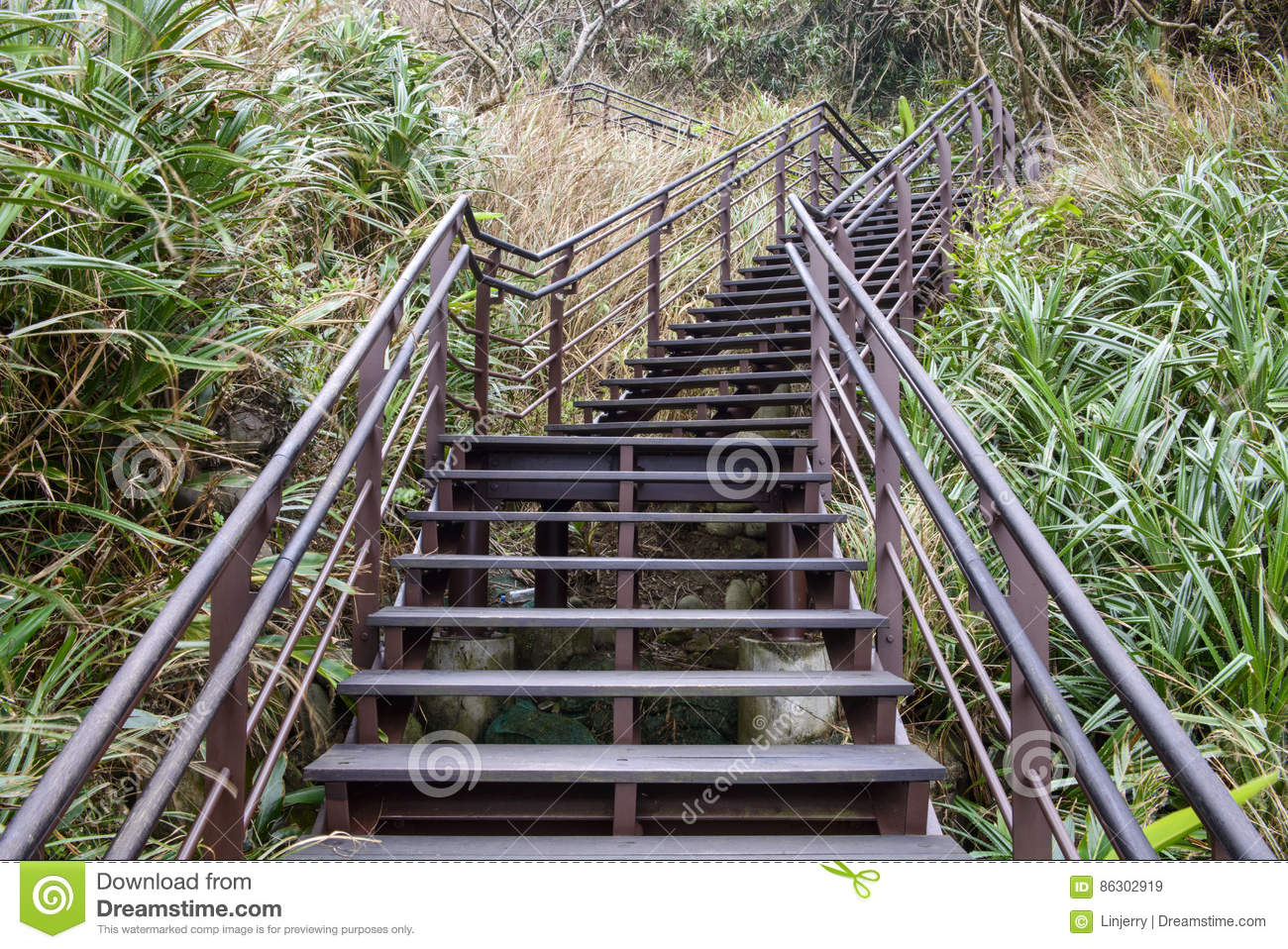Wooden Steps Up To Hill