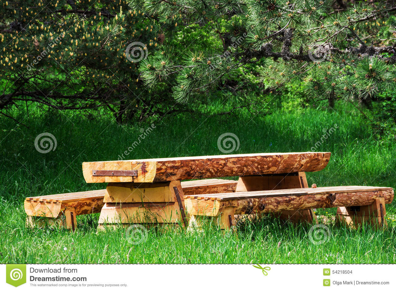 Awe Inspiring Wooden Table With Benches In A Pine Forest Stock Photo Gmtry Best Dining Table And Chair Ideas Images Gmtryco