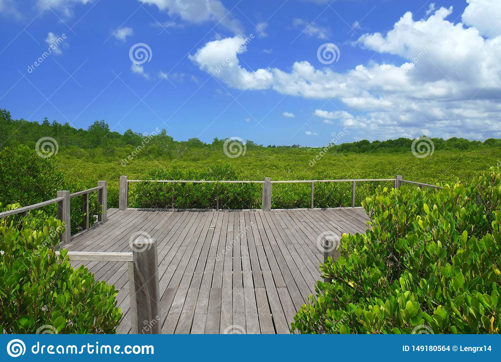 Wooden terrace with nature green