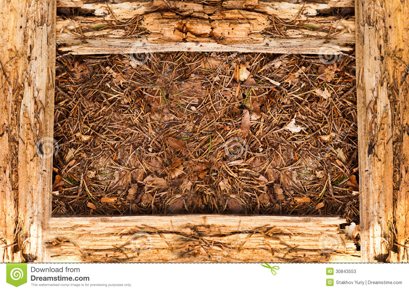 Wood Frame Texture : Wooden Texture Frame Stock Photos - Image: 30843553
