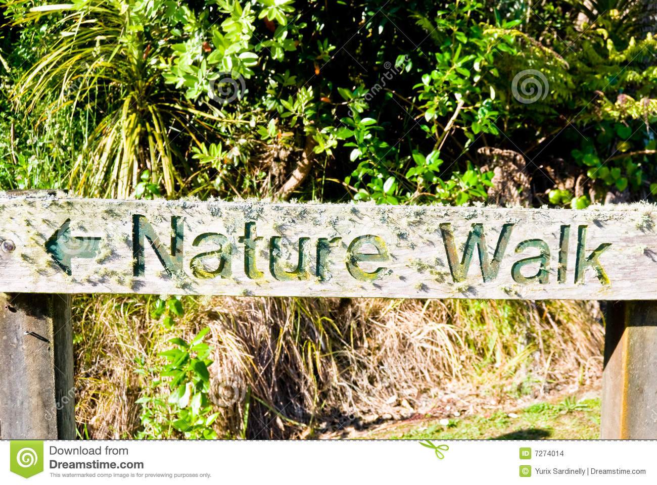 Wooden Textured Sign Nature Walk Stock Images  Image