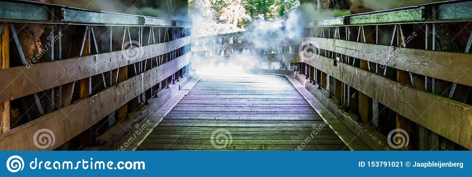 Wooden walking path through a misty cave, scary horror scenery, halloween background