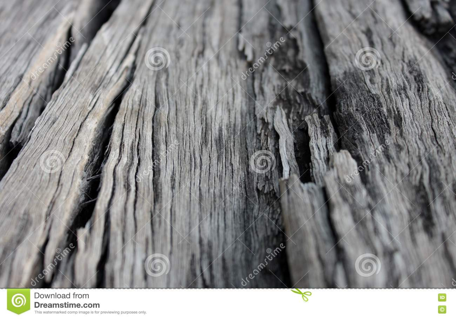 Woodgrain
