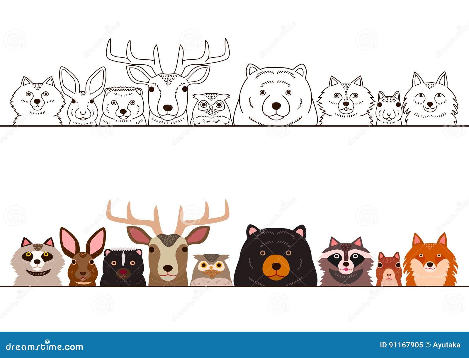 Line Drawings Of Woodland Animals : Woodland animals border set stock vector illustration of