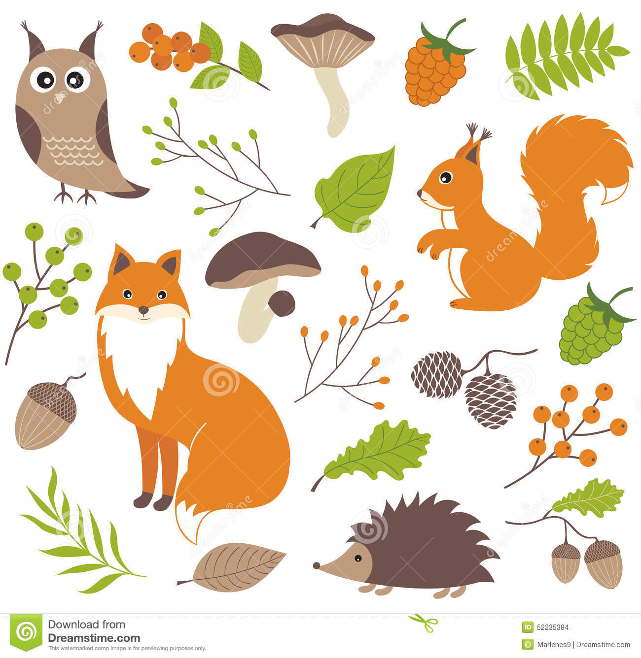 Woodland Animals Stock Vector Image 52235384