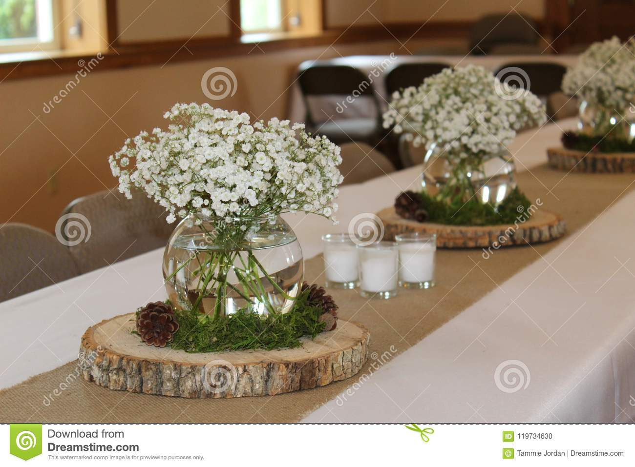 Woodland Baby Shower Decorations Stock Photo Image Of Clear