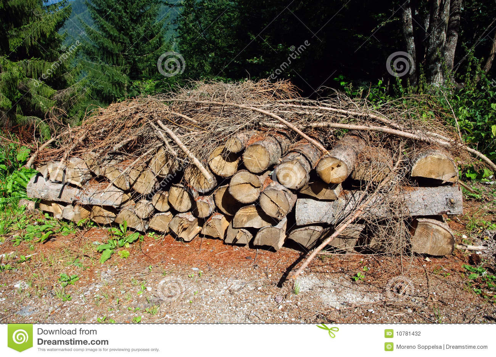 Woodpile in het Dolomiet