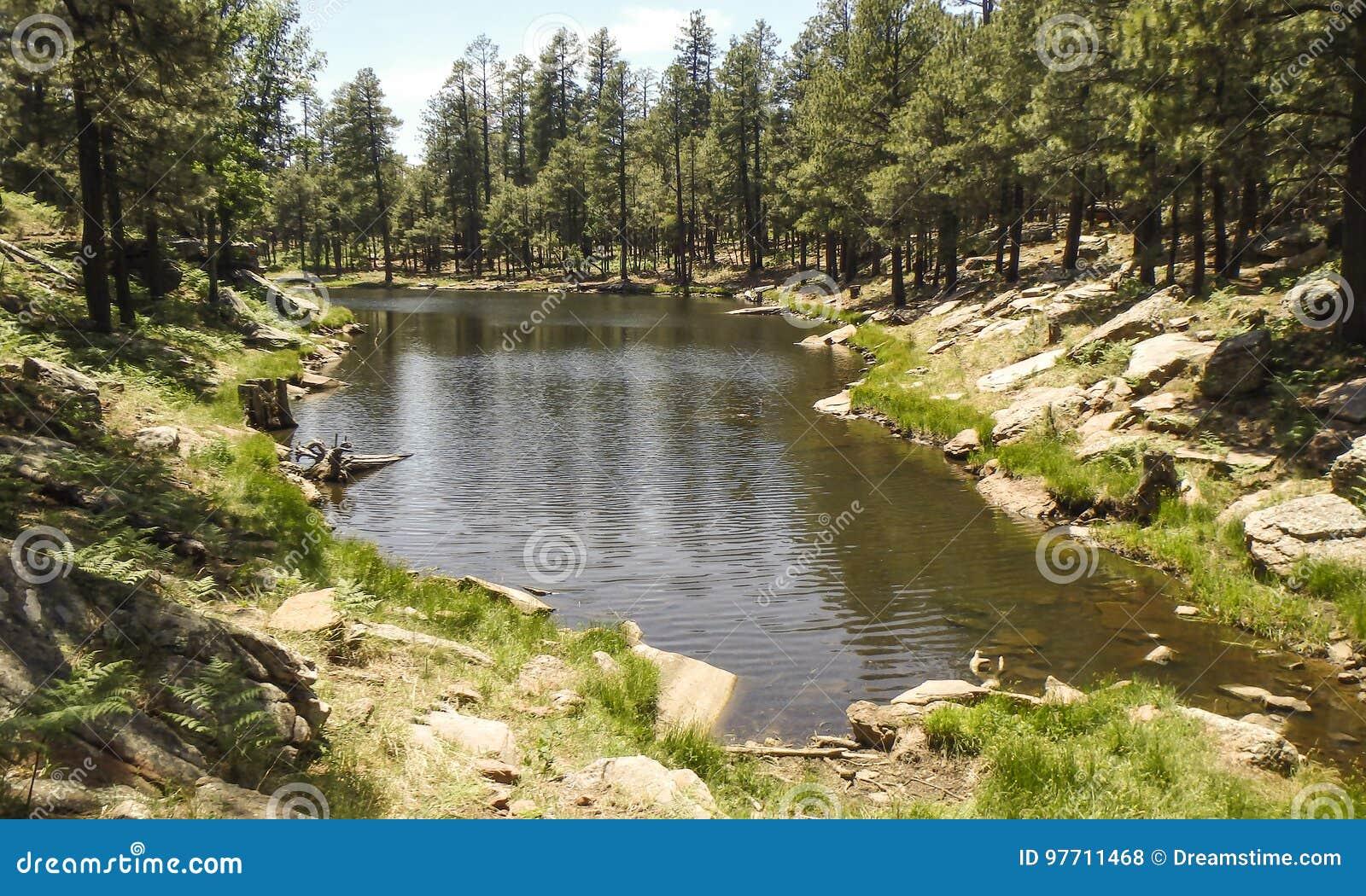 Woods canyon lake arizona stock photo image of scenery 97711468 download comp publicscrutiny Image collections
