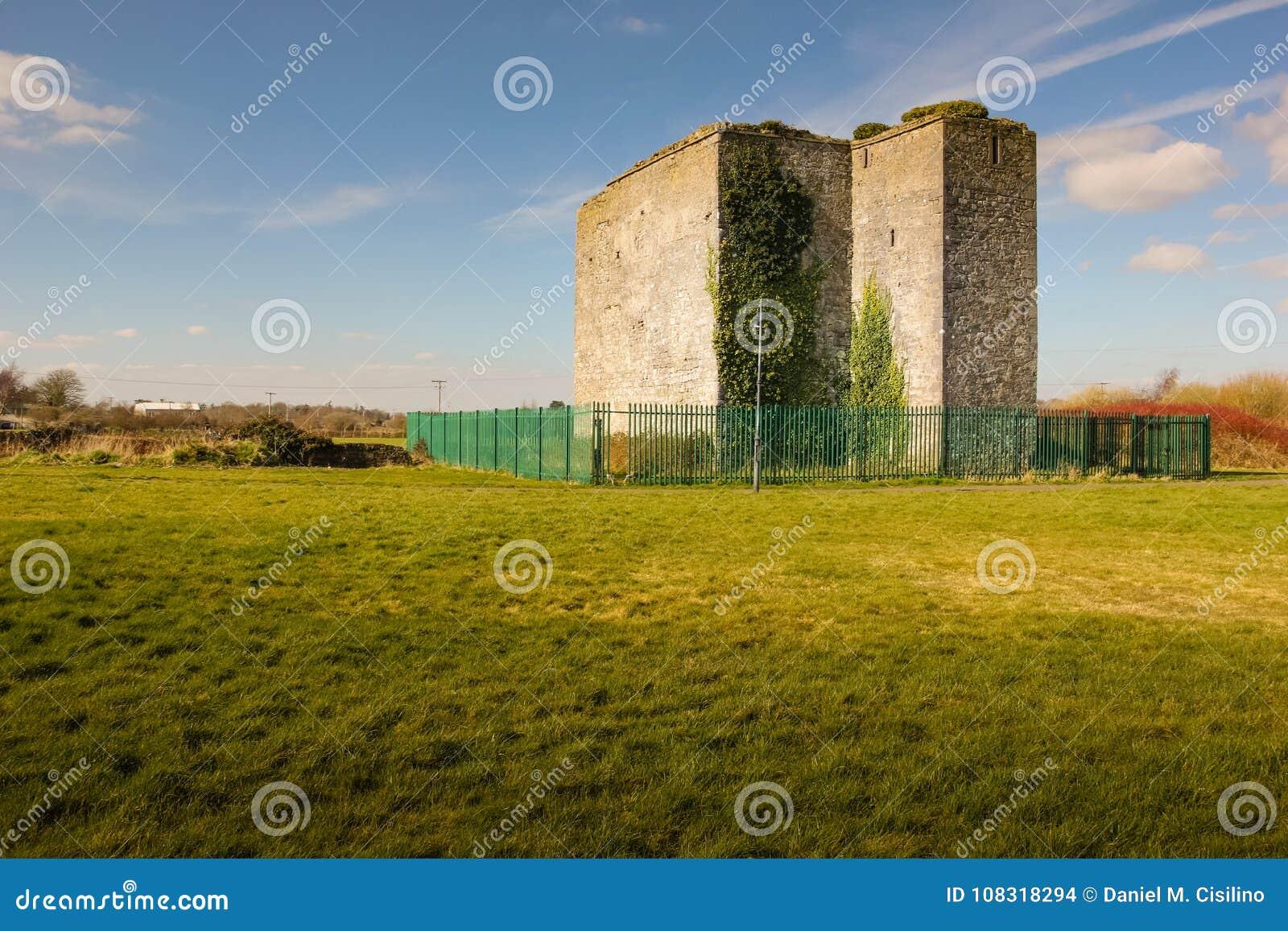 Woodstock kasztel Athy Kildare Irlandia