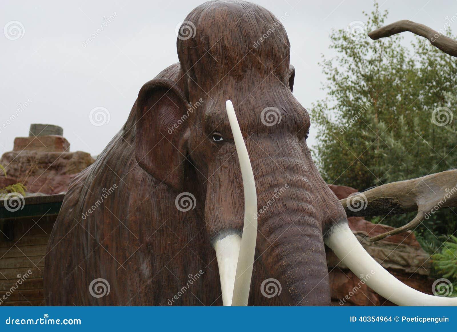 Mammut Evolution