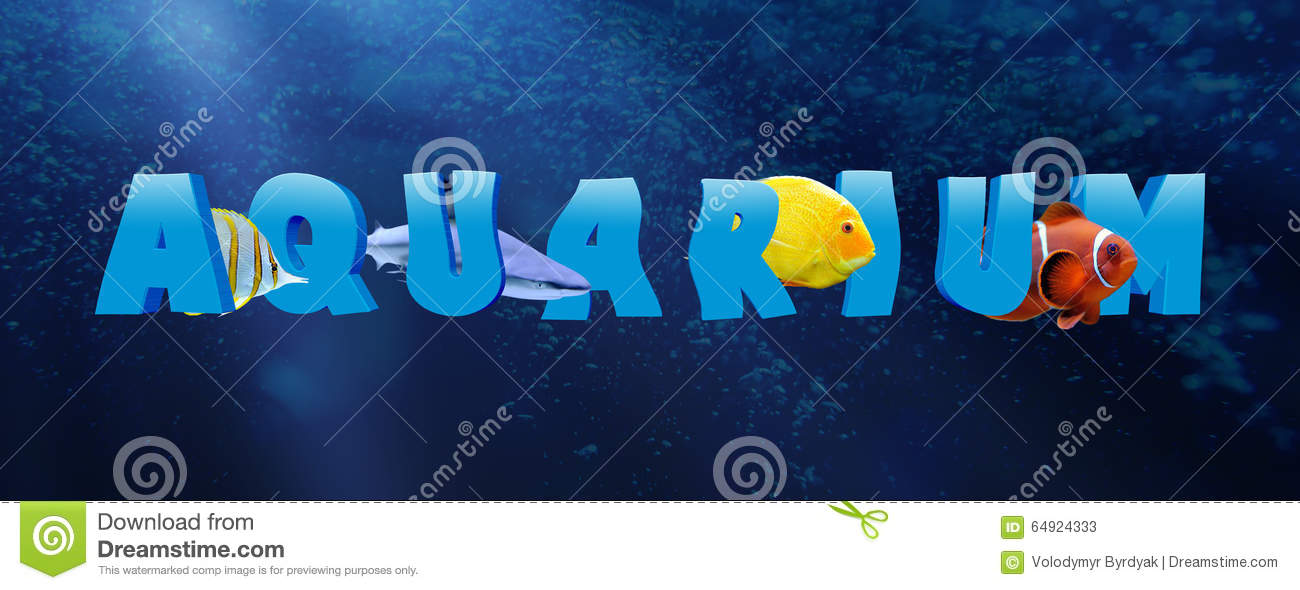 Word aquarium with many tropical fish stock photo image for Is fishes a word