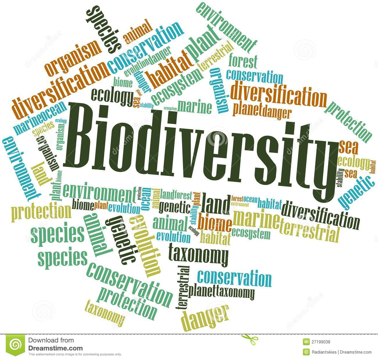 classification and marine biodiversity I – bioindicator species and their use in biomonitoring – agerhardt  biodiversity indicator: the species richness of an indicator taxon is used as indicator.