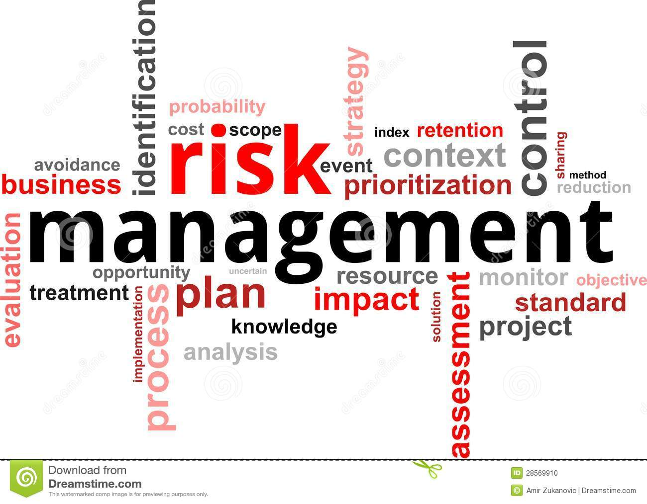 risk management plan in microsoft word