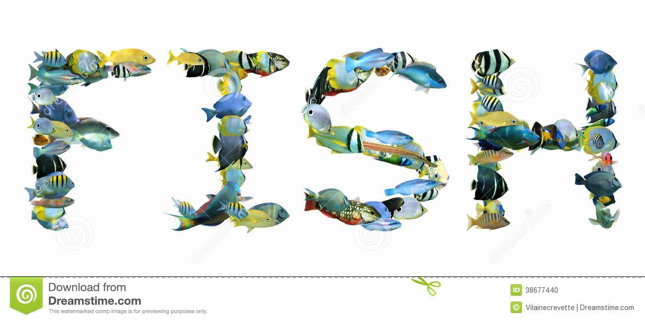 word fish composed from tropical fish isolated stock photo