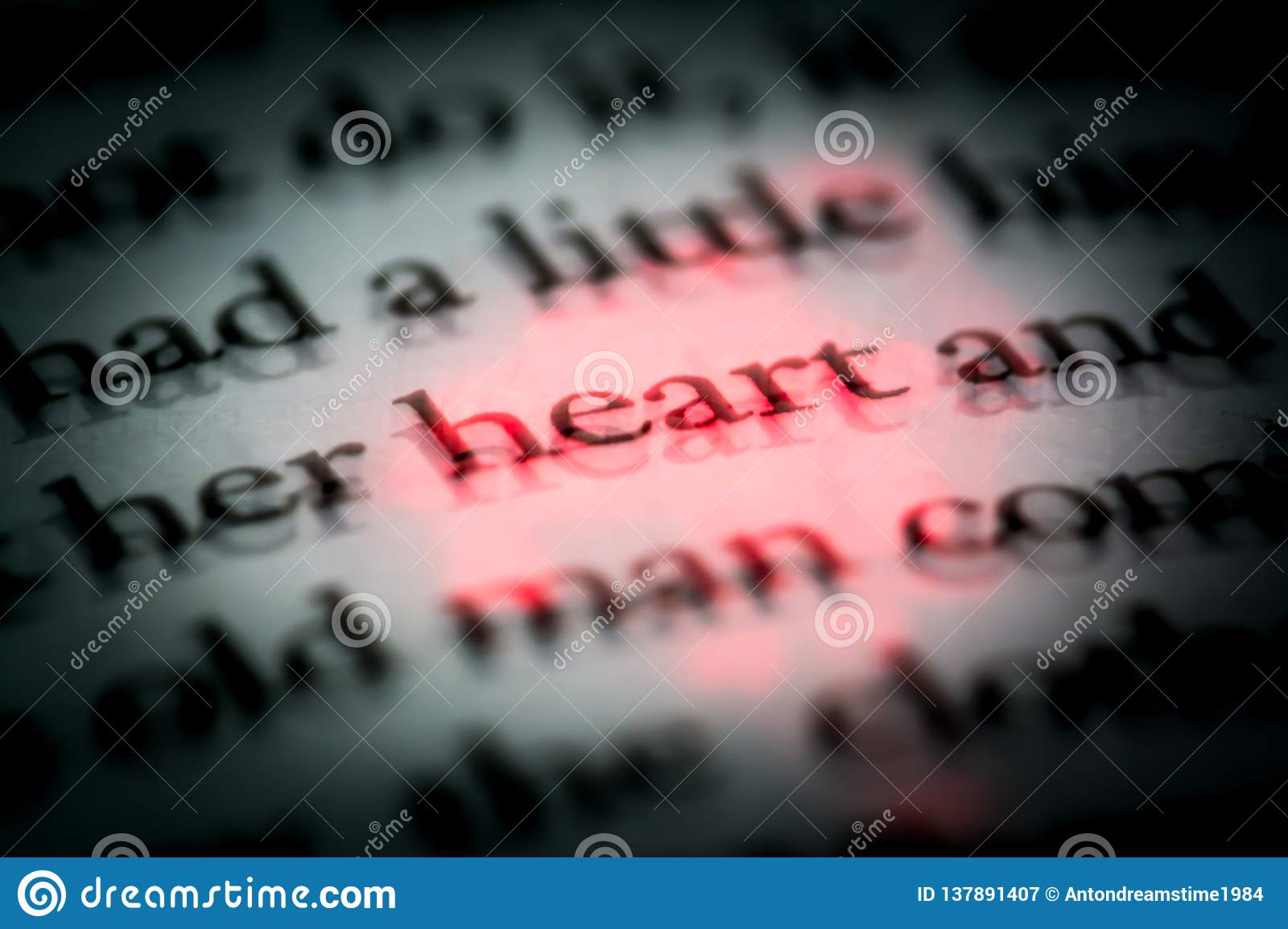 The word heart in a book in English close up, macro, highlighted in red. The text in the book with 3D effect.