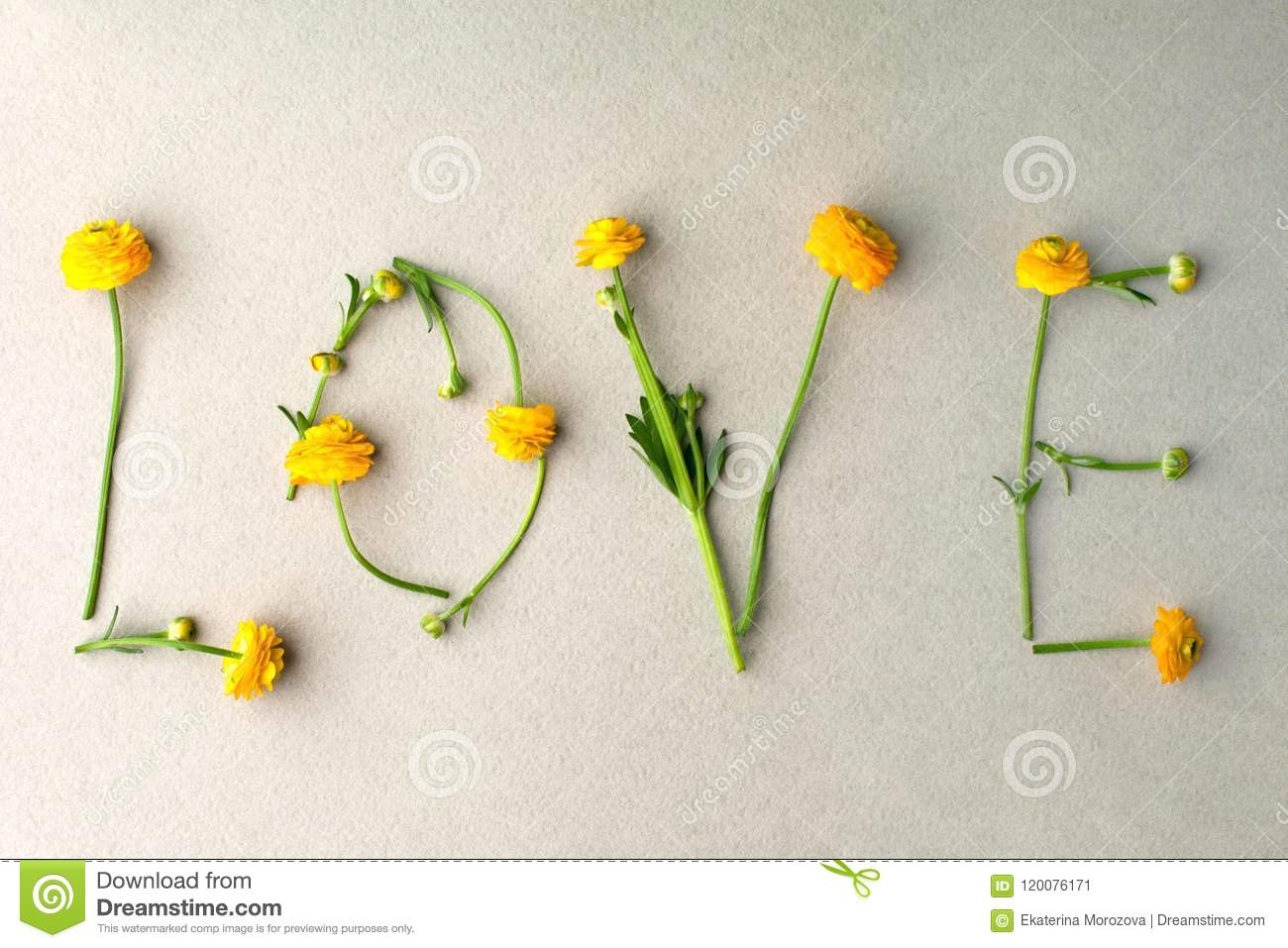 Word LOVE made of yellow flowers on green pastel background. Minimal love concept. Mothers day and Valentine`s Day Flat lay
