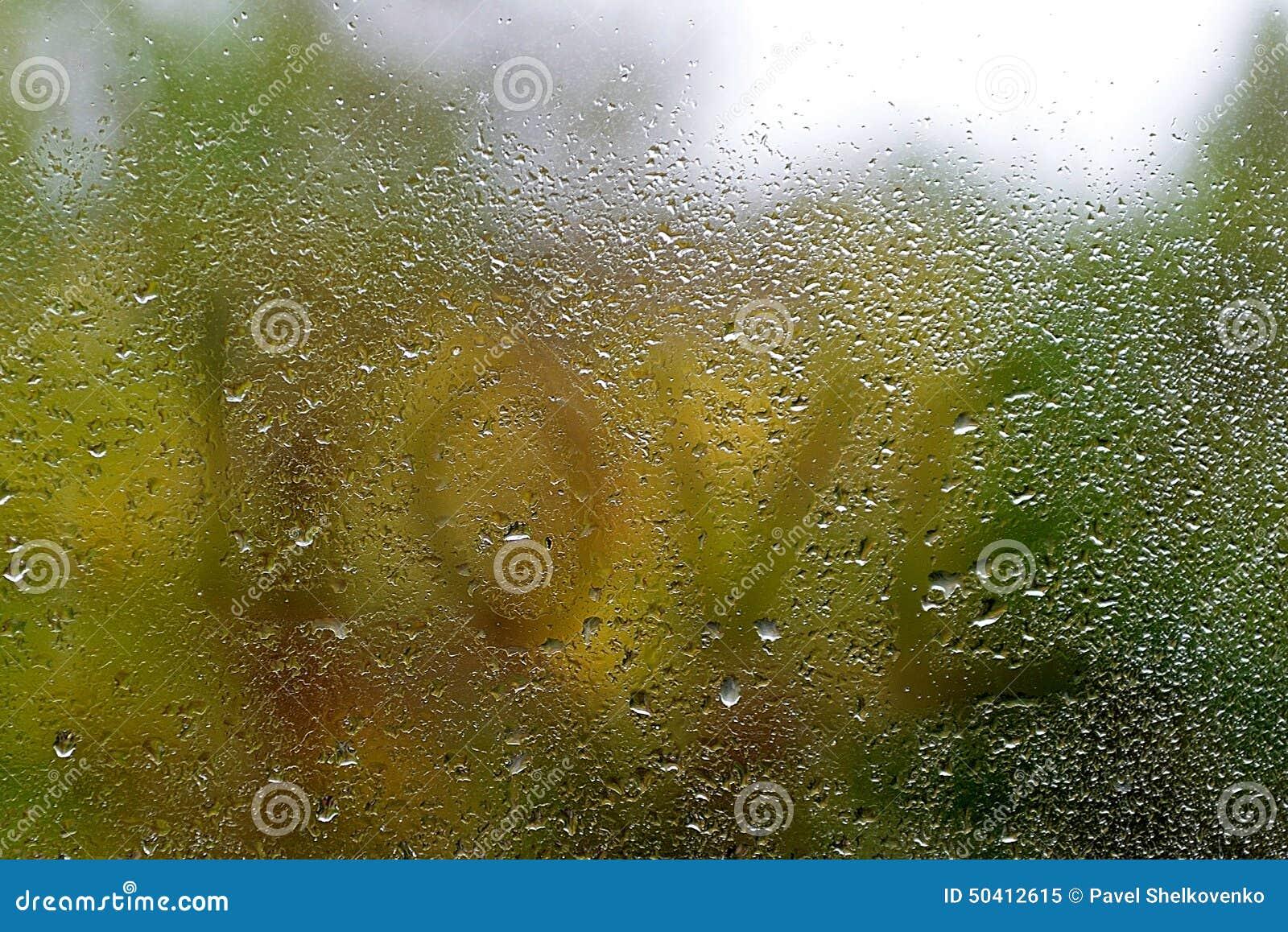 Word Love Written On Rain Drops On The Window Rain Drops On The Window Background