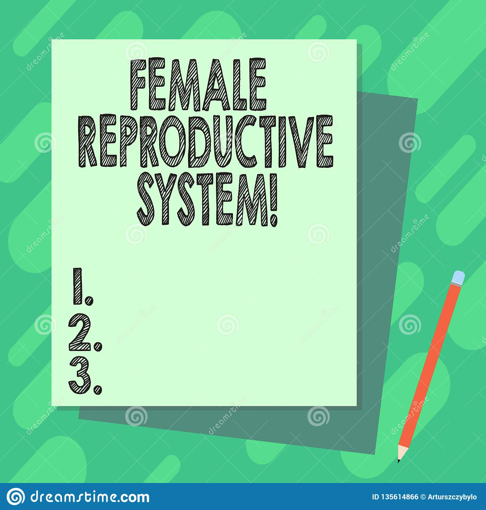 Word writing text Female Reproductive System. Business concept for responsible in reproduction of new offspring Stack of