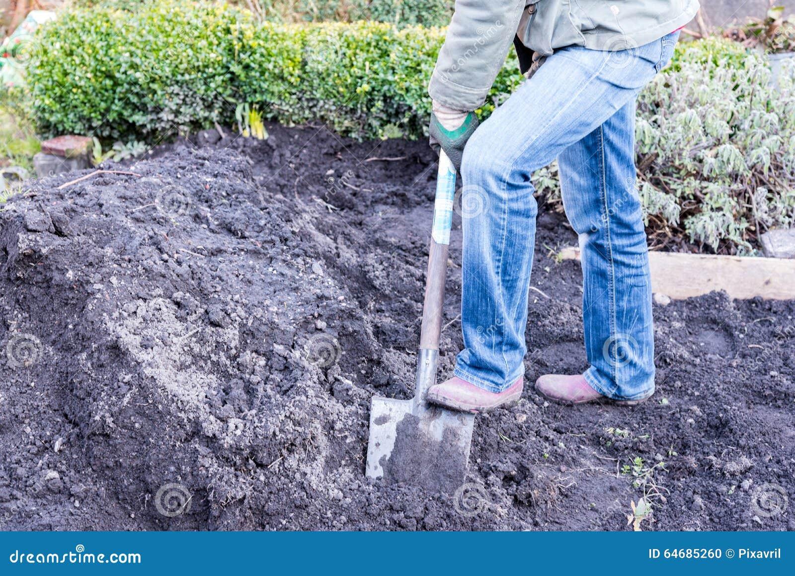 Work in the garden stock photo image 64685260 - Gardening works in october winter preparations ...