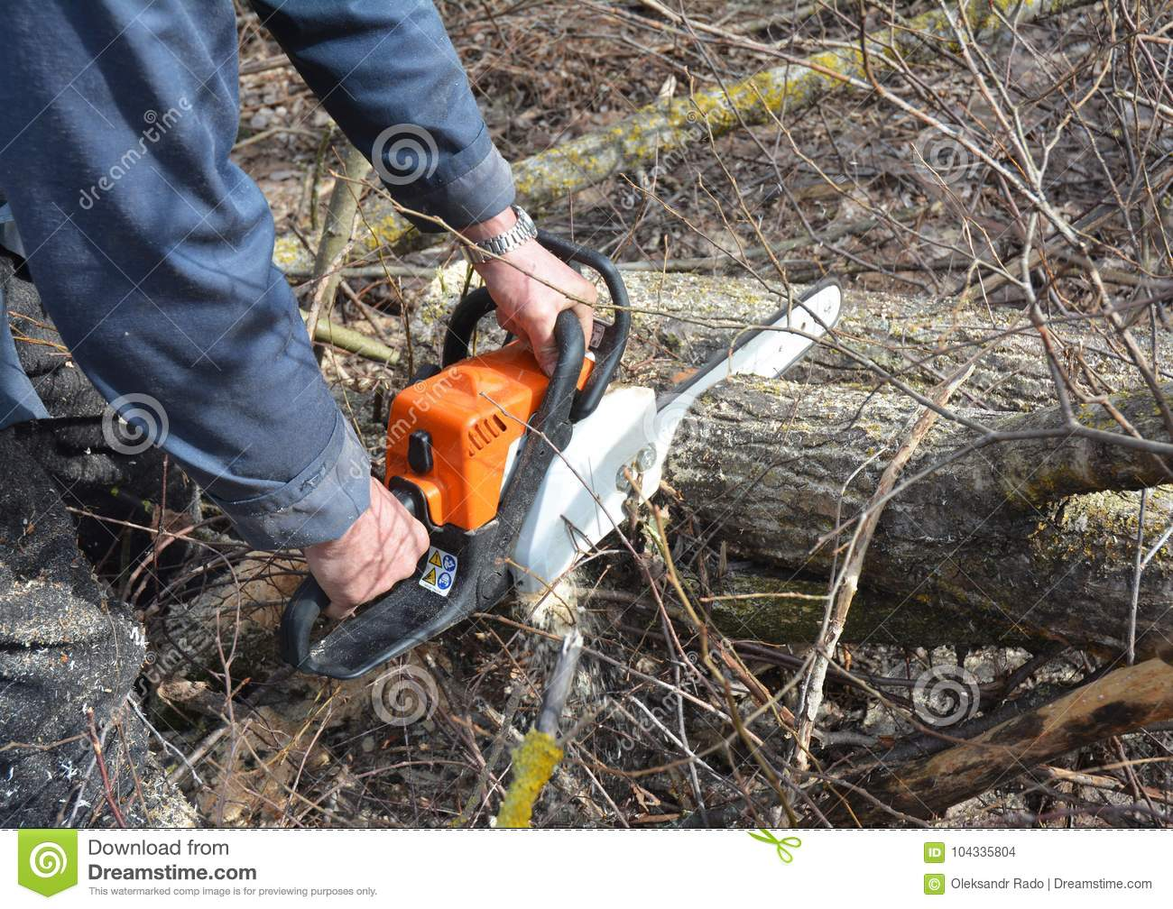 Worker with Petrol Chainsaw in Forest. Tree Cutting Saw. Man with Gasoline Petrol Chain Saw Tree Cutting Outdoor.
