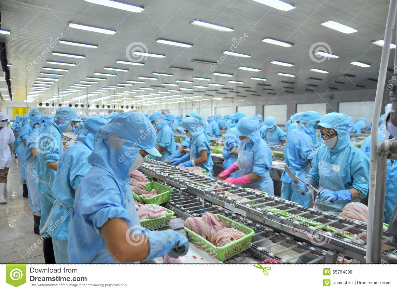 1,775 Seafood Factory Photos - Free ...