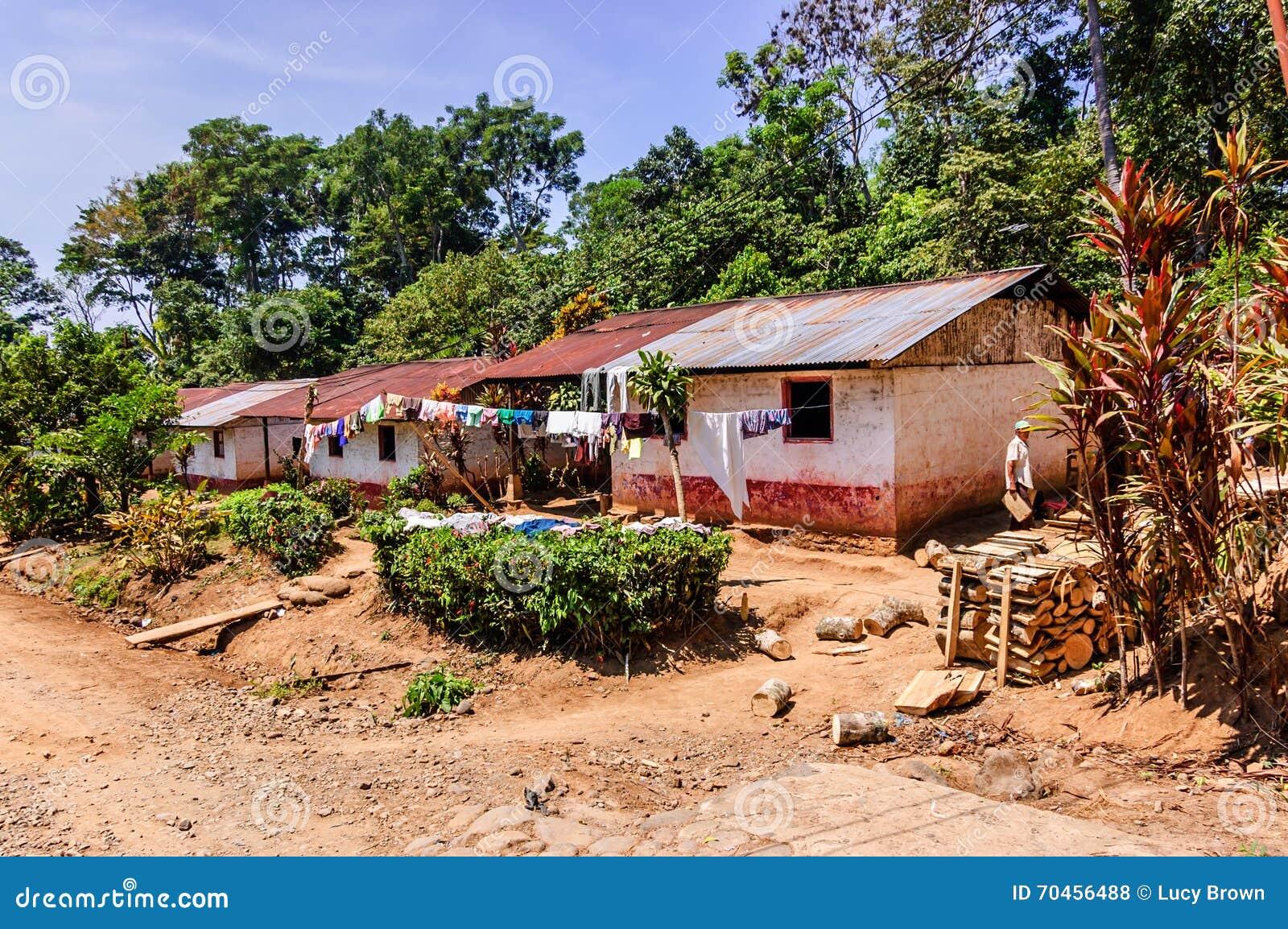 Rubber plantation business plan