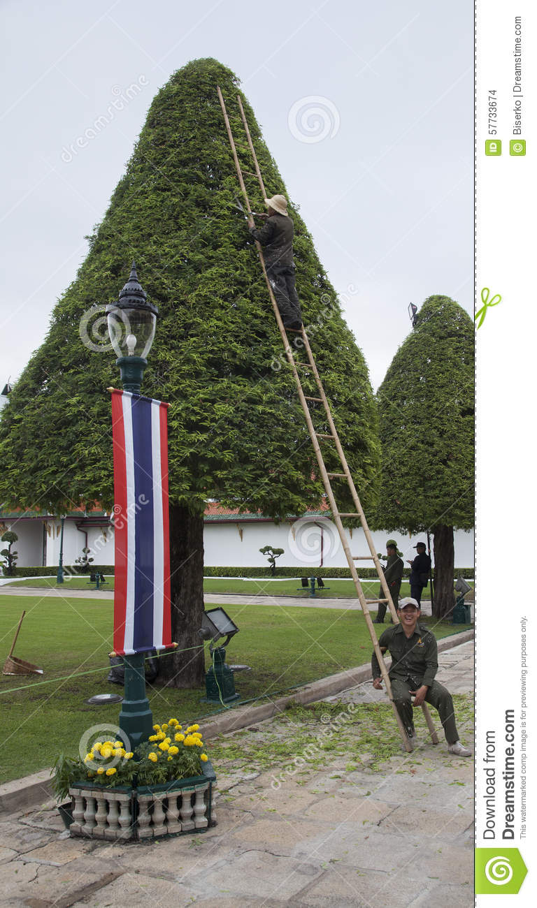 Two workers trim the trees editorial image cartoondealer for Garden and its importance