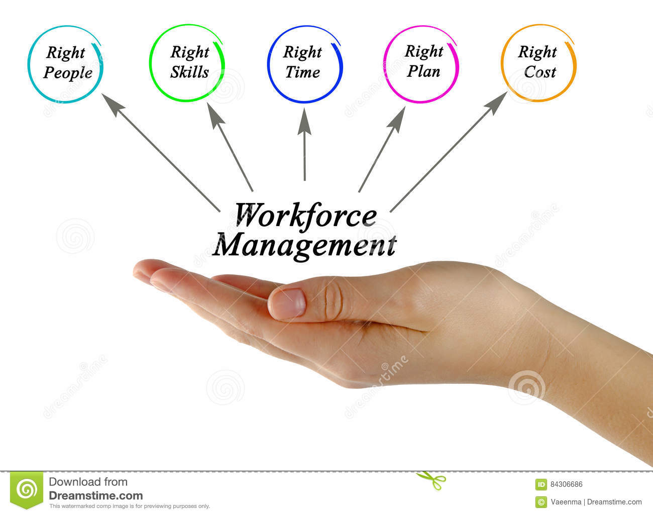 Workforce management stock photo image of resource right for Www workforcescheduling com jewelry tv