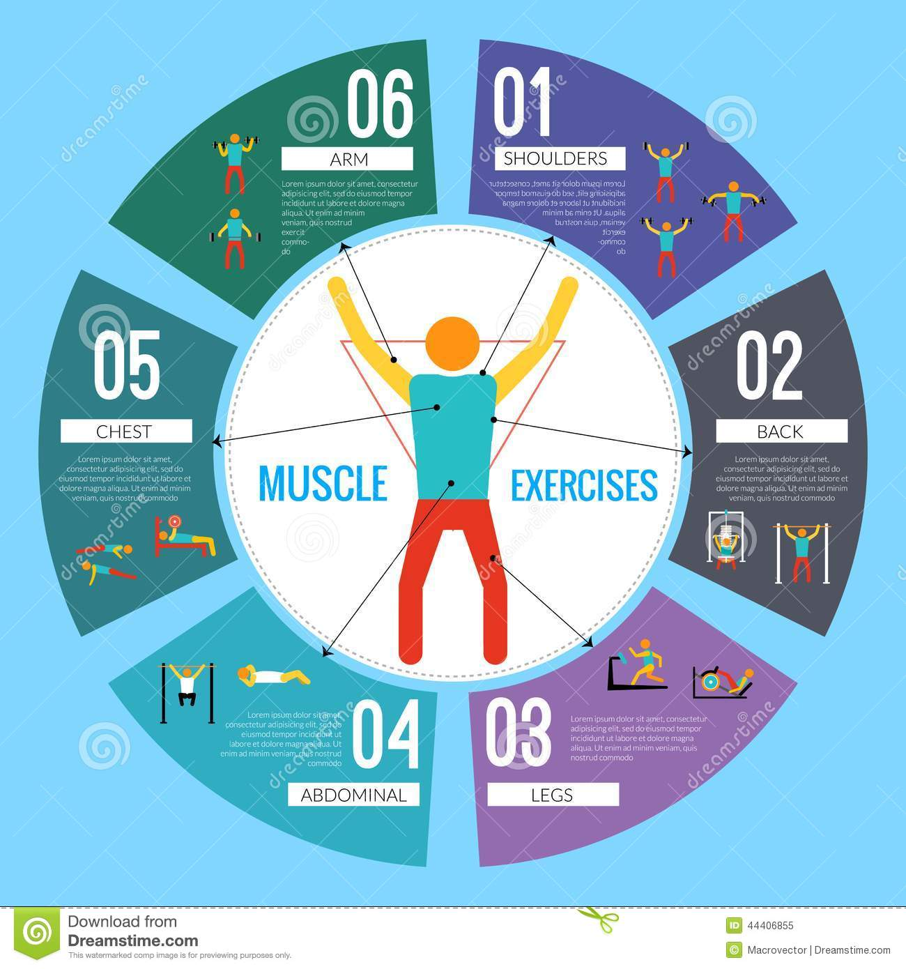 Exercise Infographic Stock Vector - Image: 57425921