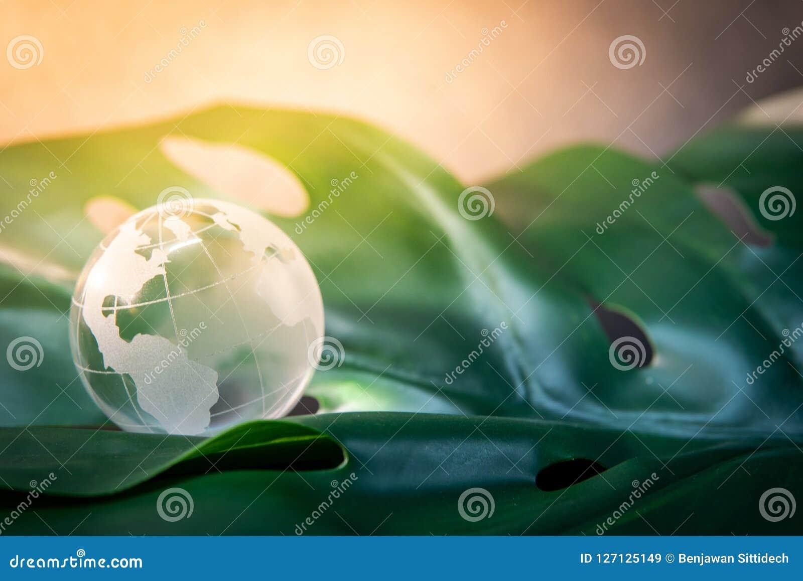 World globe cystal glass on green leaf