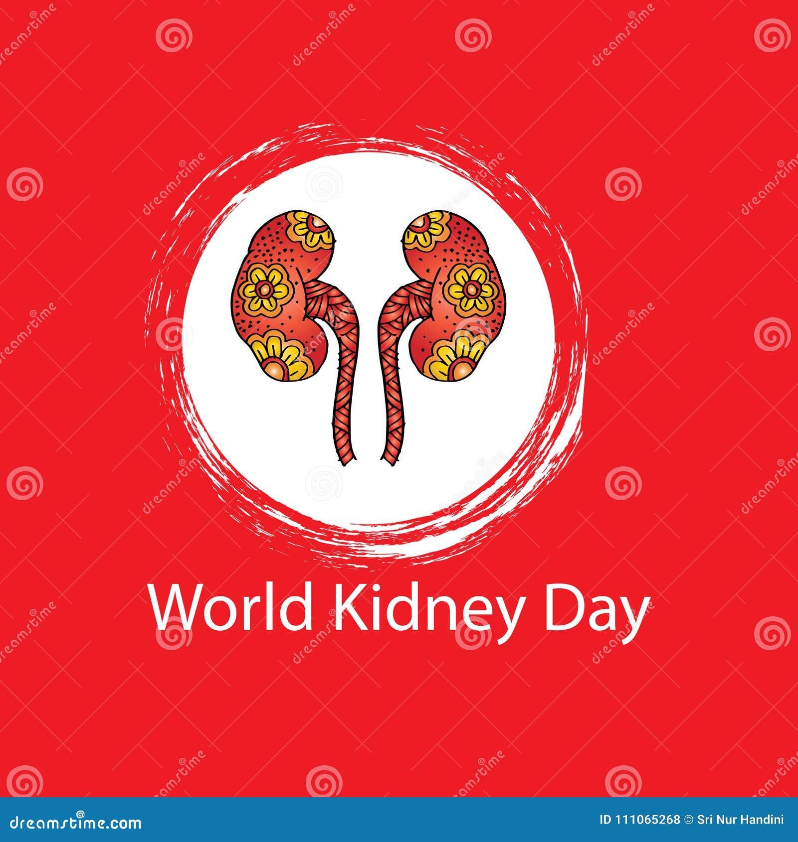 World kidney day stock illustration  Illustration of biology